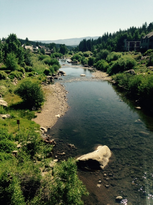18 somethings truckee river